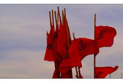 Red Flag...Pain makes you feel you are alive...and what is joy and happiness??