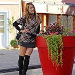 Red Flower Pot