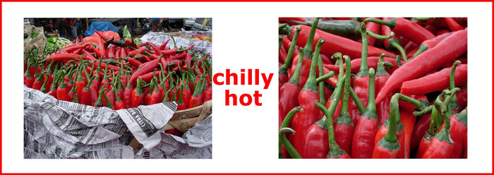 red hot chilly pepper ...