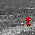 * red man *