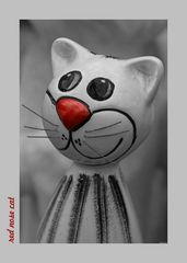 red nose cat is here!