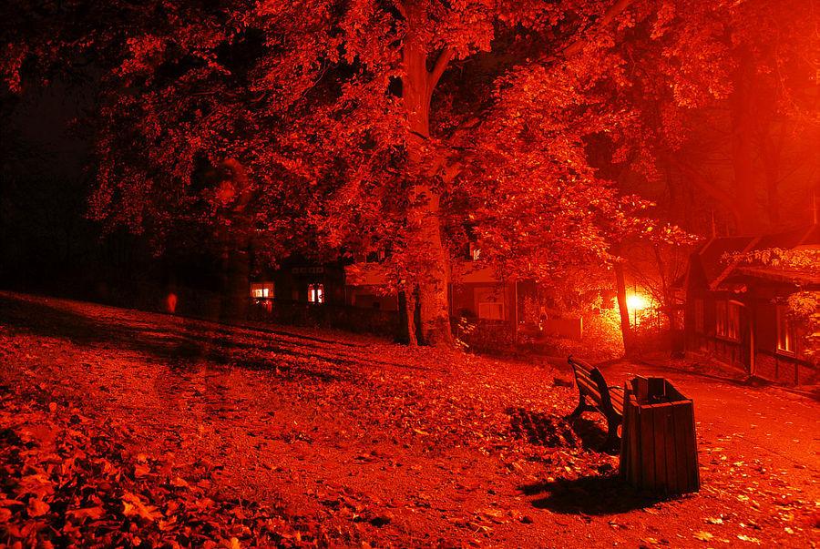 rednight