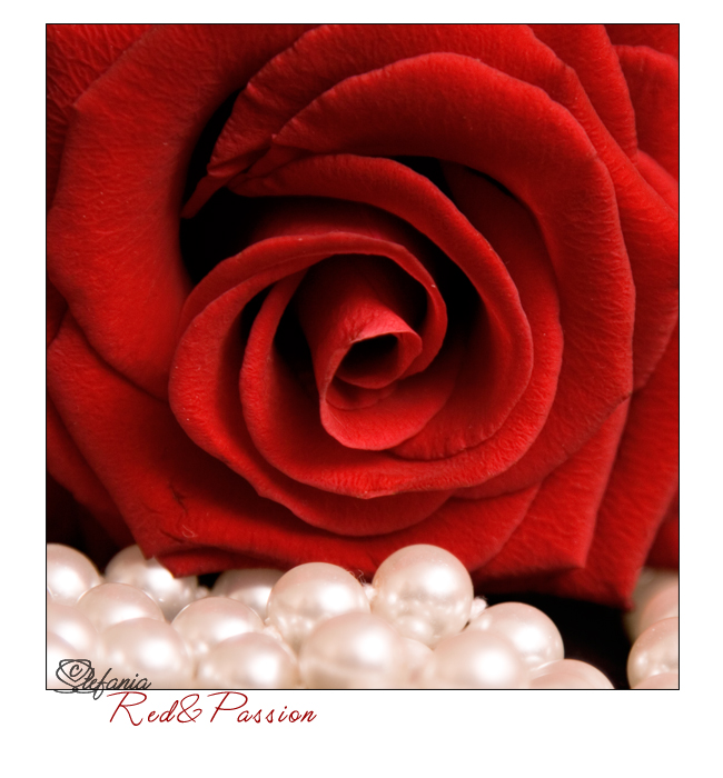 Red&Passion