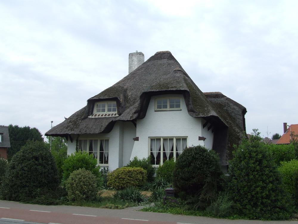 Reetdach Haus in Kinrooi (Belgien, Vlaanderen)