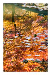 Reflected fall