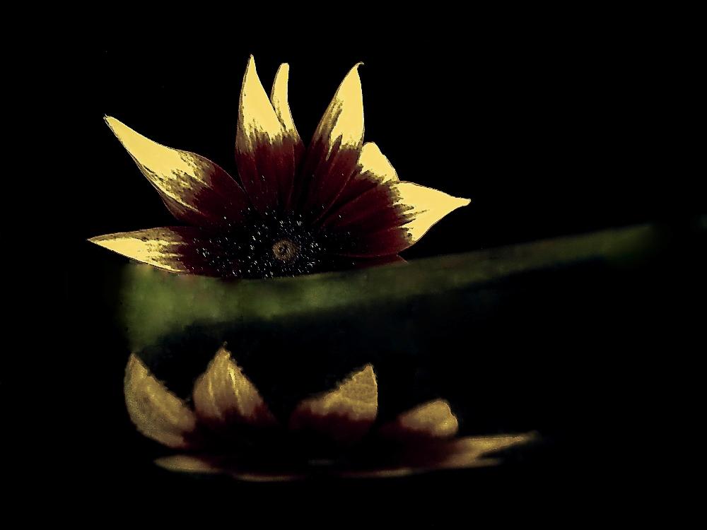 Reflecting on reflection ...