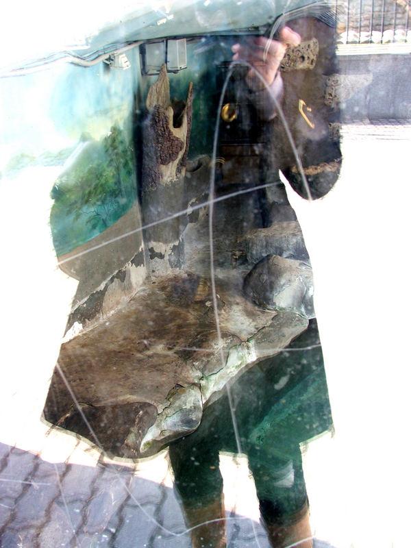 ..reflection..