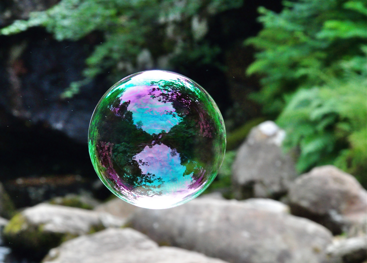 Reflection caught in a bubble