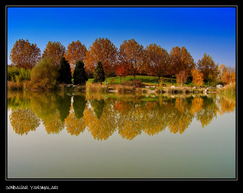 Reflection in Autumn