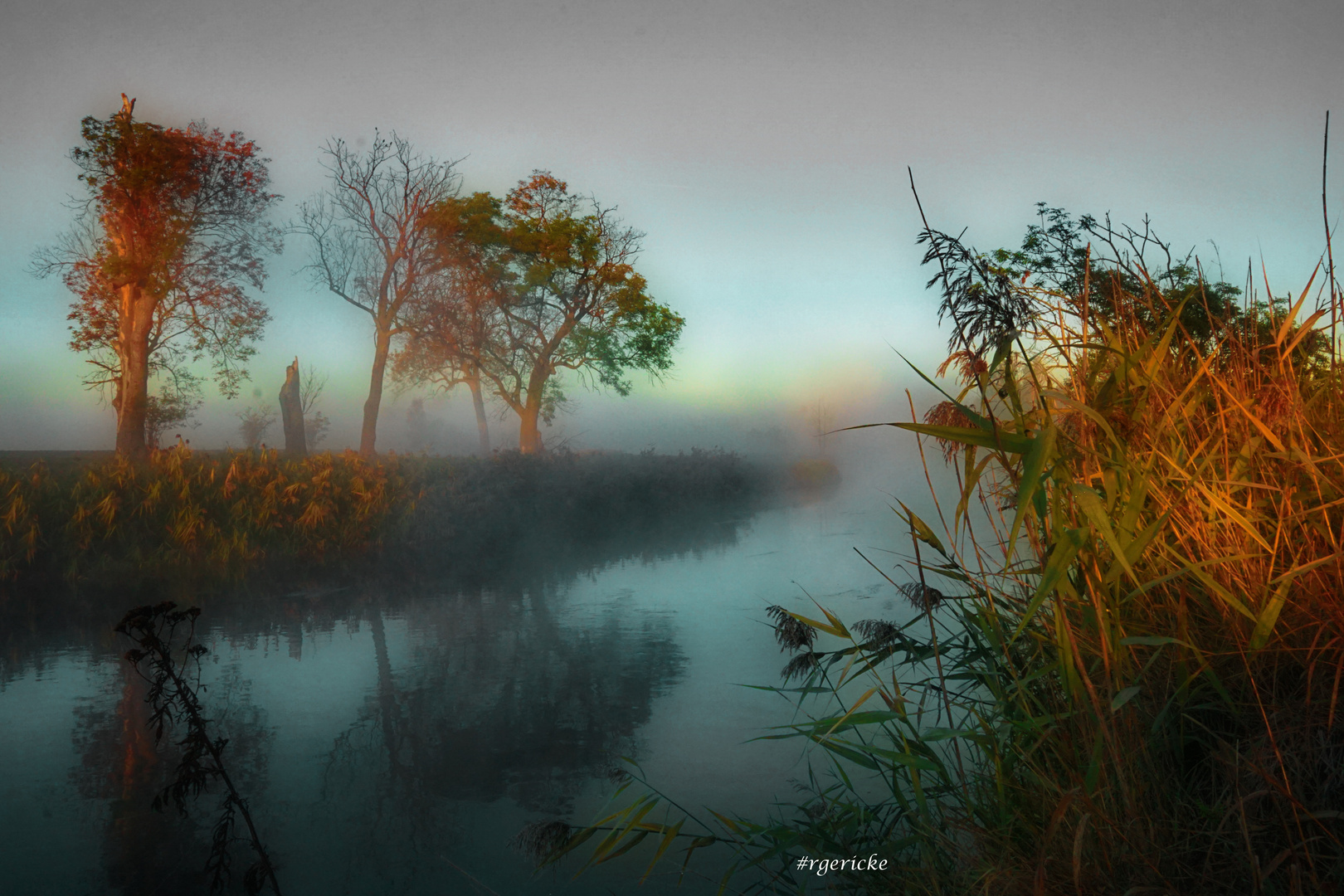 ... reflection in the fog