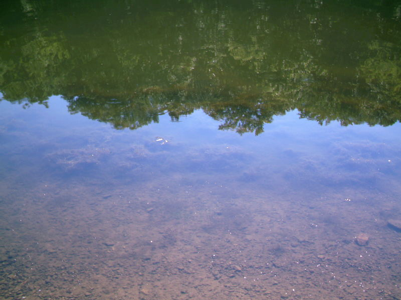 Reflection on the water at Patterson Point, KY