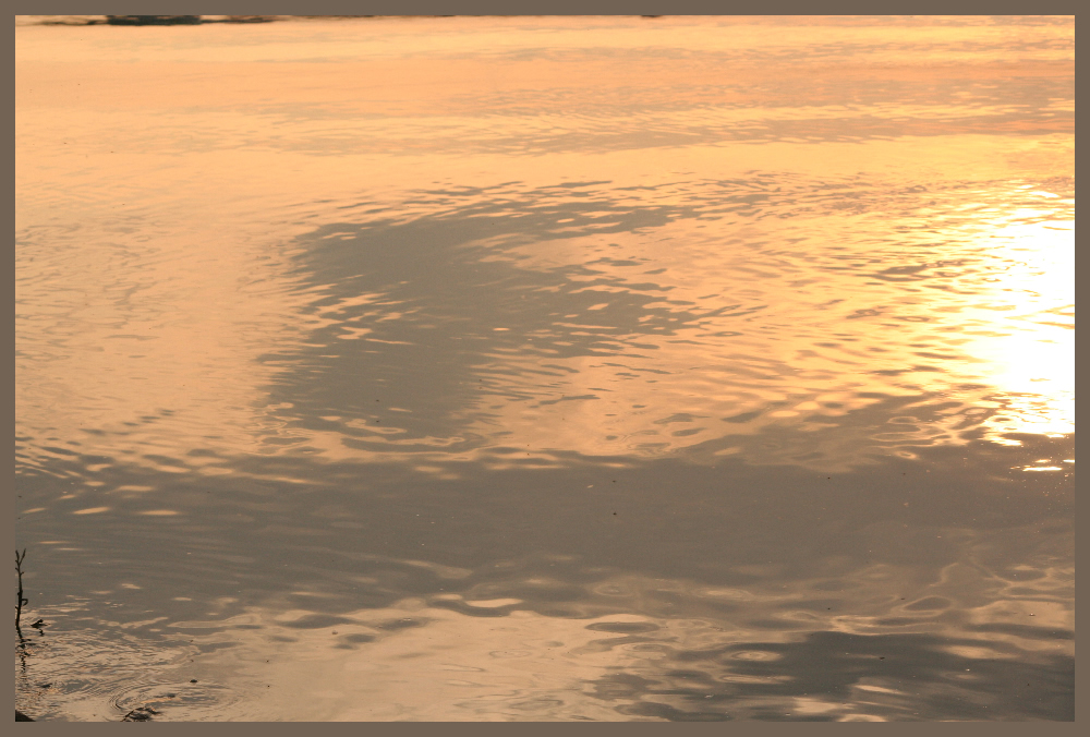 Reflections 7: Firewater