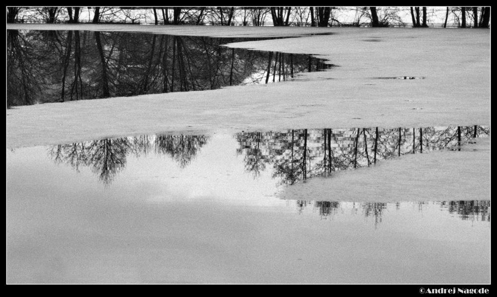 Reflections II