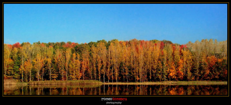 reflections of colour