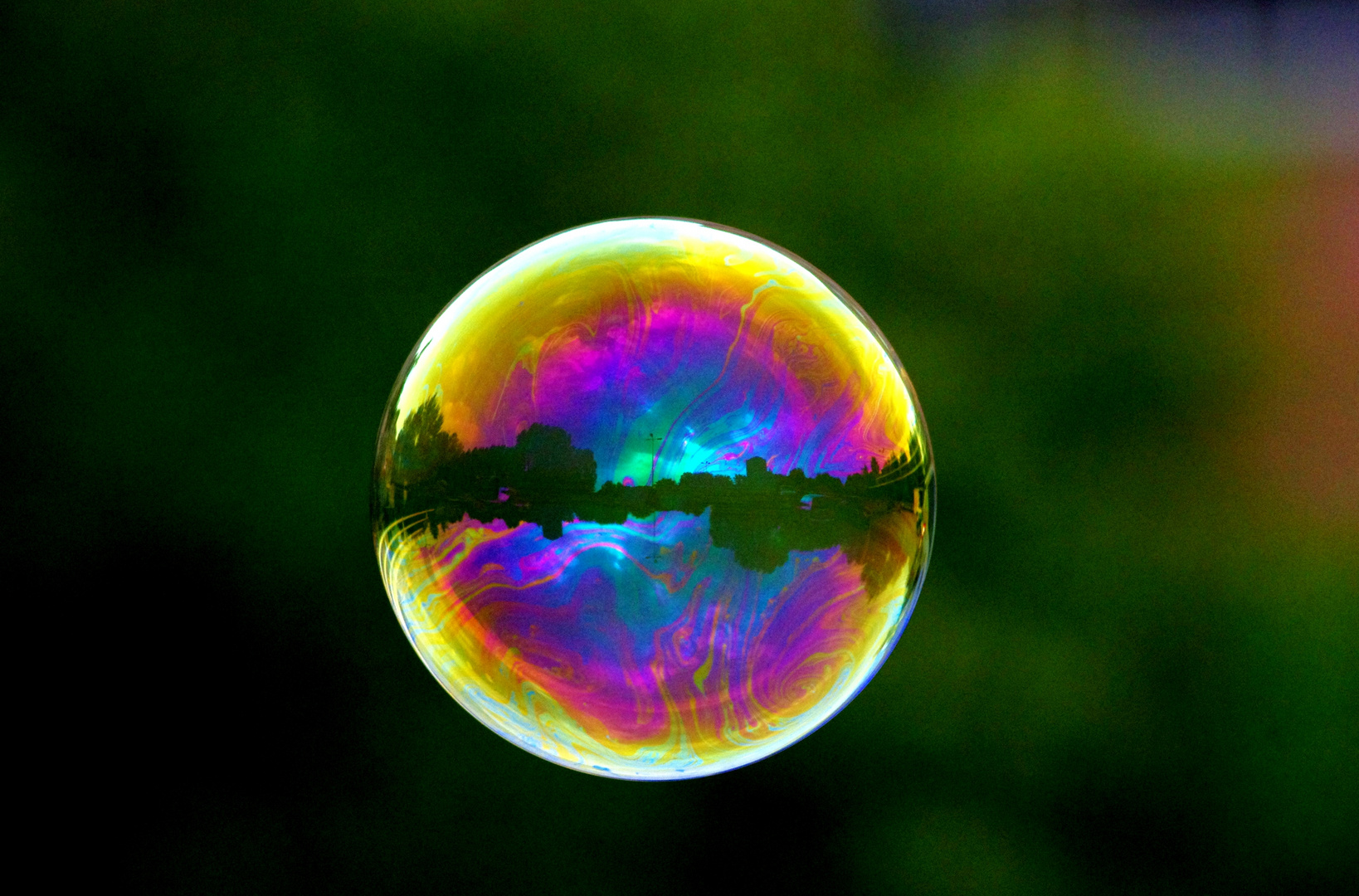 Reflections on a bubble!