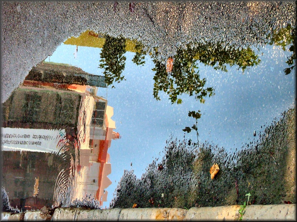 Reflections on road.