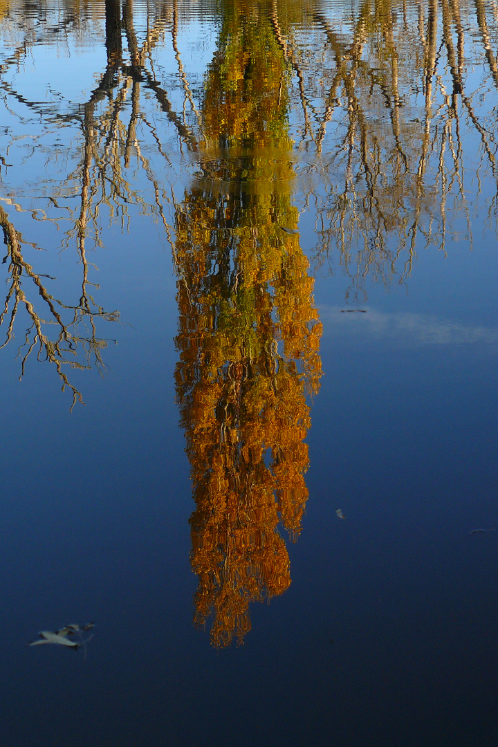 reflejo en el agua