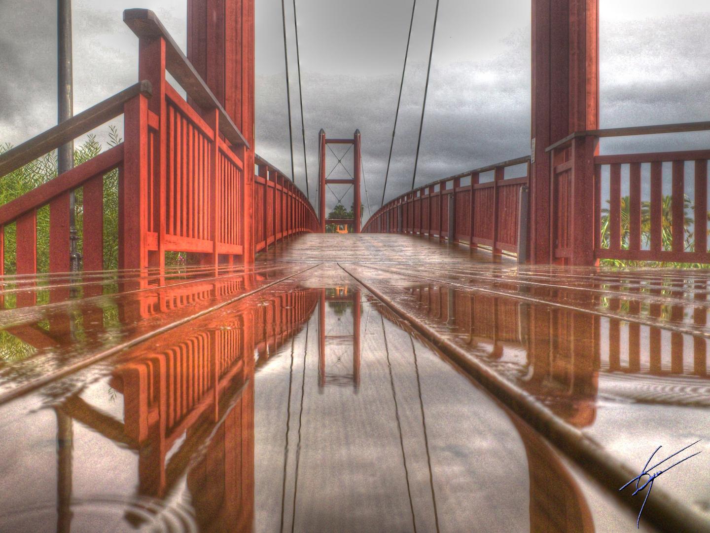 Reflejos de lluvia