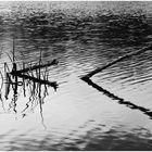 Reflejos en el agua