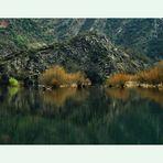 Reflejos en el lago 4