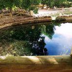 Reflejos en el Nacimiento del Río Segura, a 5 KM de Pontones (Jaén ) España
