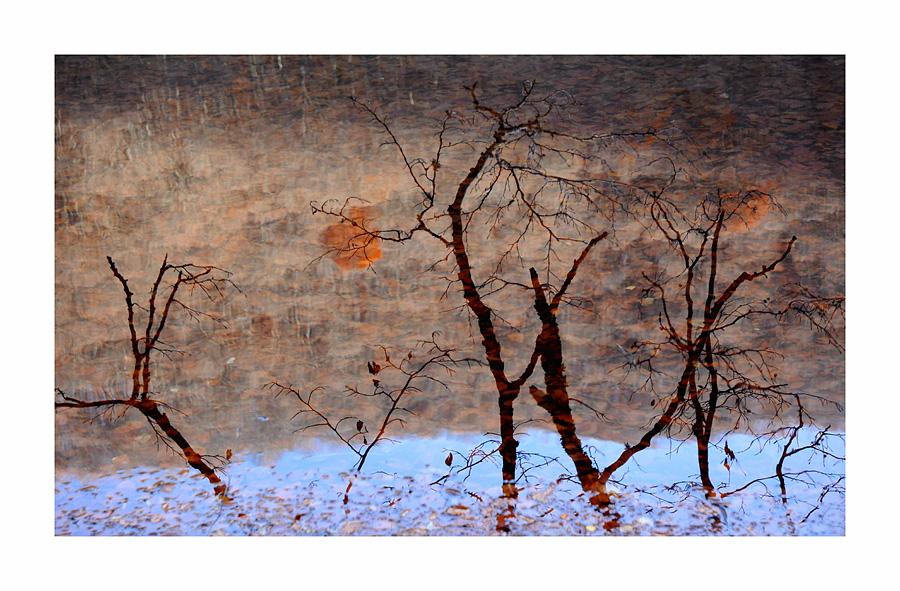 Reflet dans l'eau d'un lac pyrénéen
