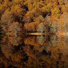 Reflet d'automne...