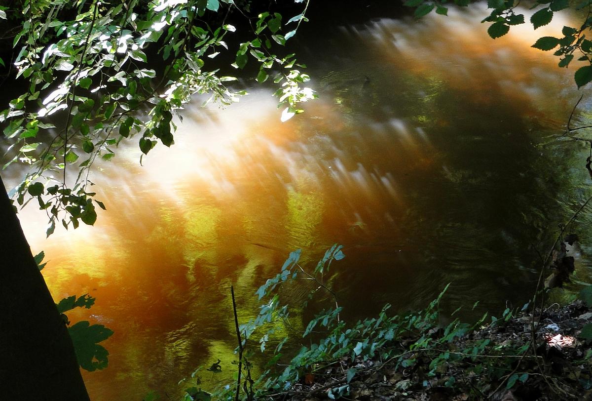 reflet d'or dans l'eau