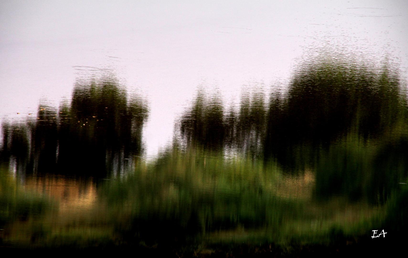 reflet sur rivière