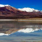 reflets boliviens