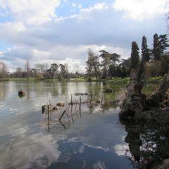 ..Reflets dans le lac Daumesnil (Vincennes)..