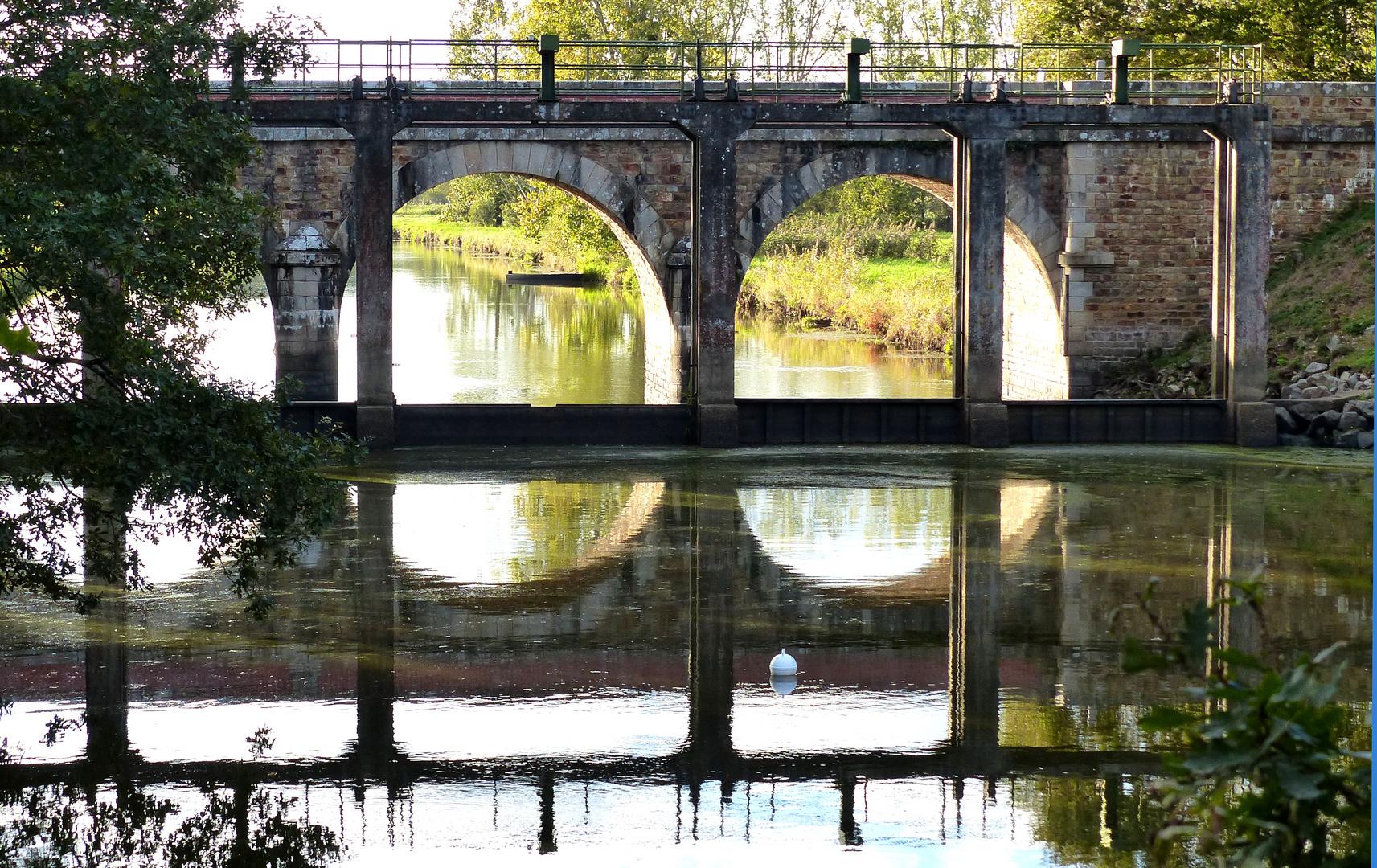 Reflets sur l'Acheneau, une rivière du pays nantais.