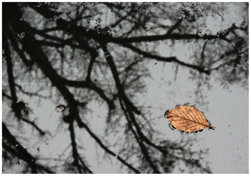 Reflexionen (2)