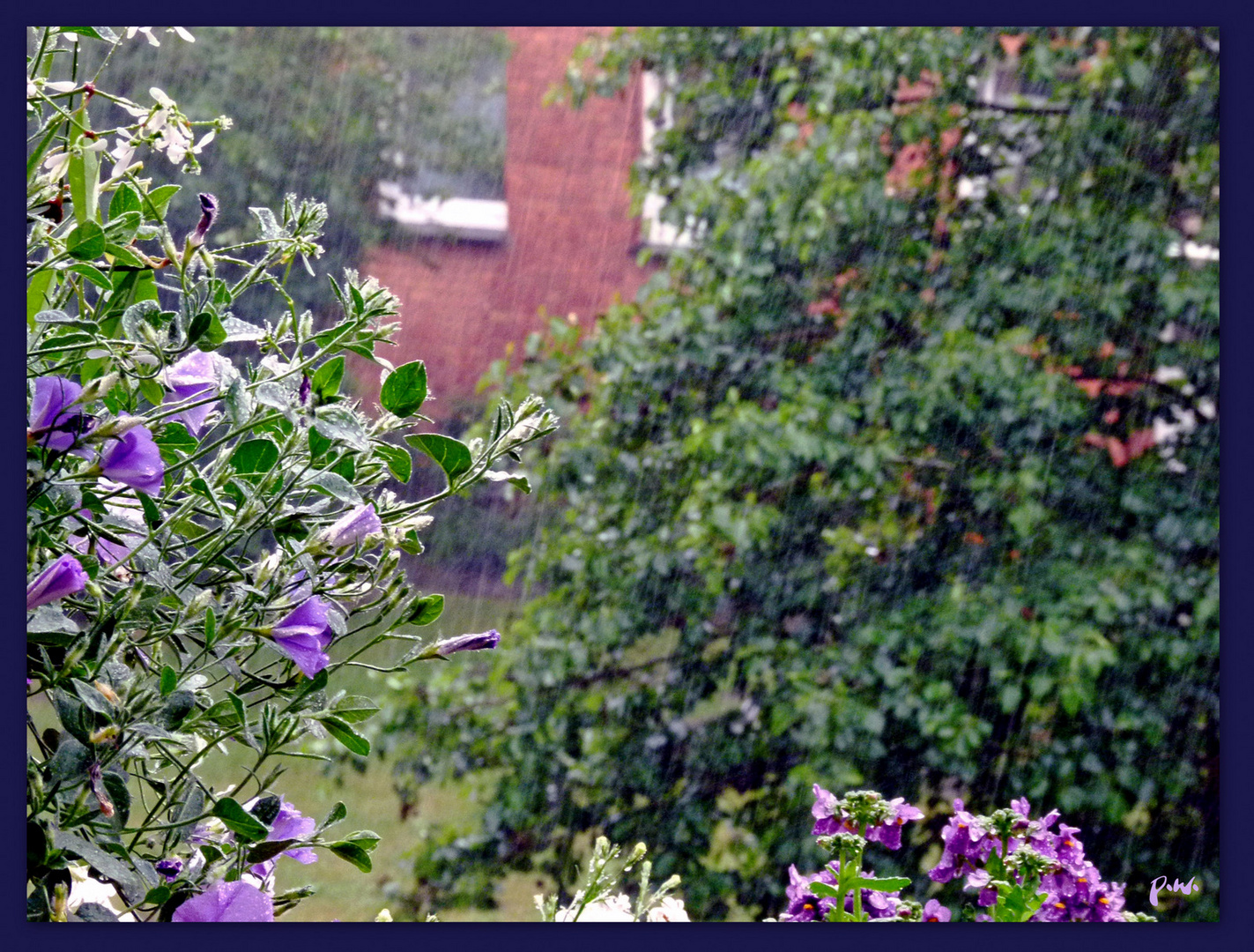 Regen Heute