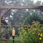 Regen im Garten