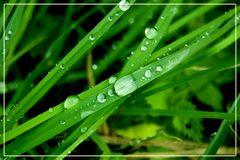 Regen Regen. Wann ist das vorbei?