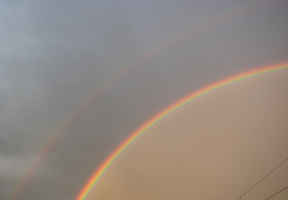 Regenbogen!!!