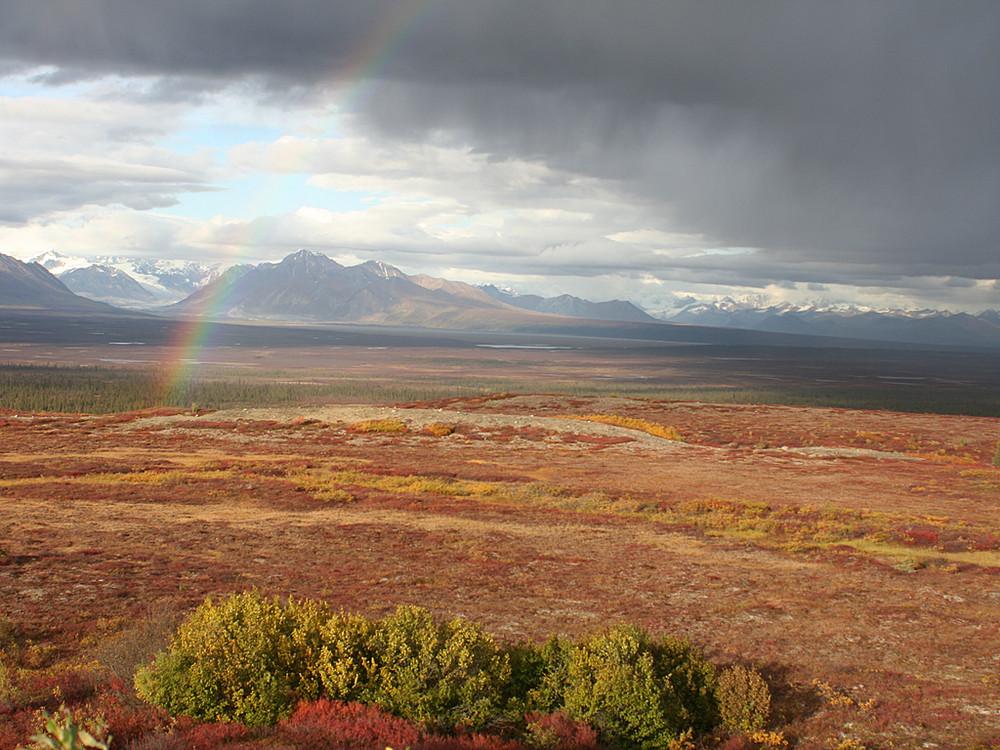 Regenbogen am Denali Highway