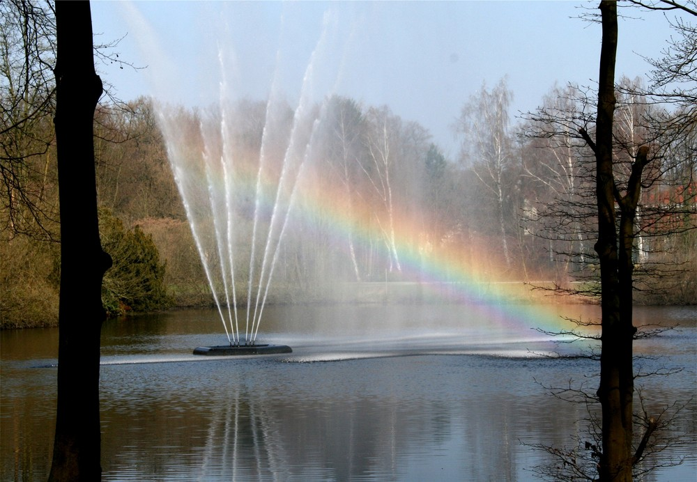 Regenbogen am Ellernteich a