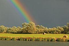 Regenbogen an der Elbe