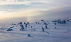 Regenbogen bei minus 15 Grad