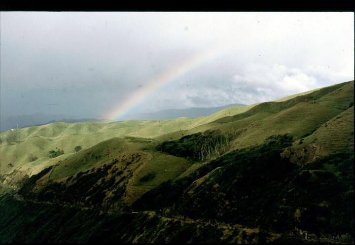 Regenbogen bei Paraparaumu (Nordinsel)