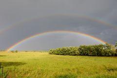 ~ Regenbogen ~