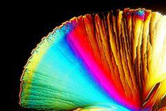 Regenbogen - Fächer