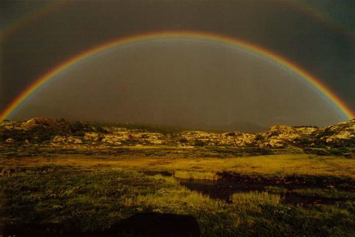 Regenbogen im Dovrefjell (Norwegen)
