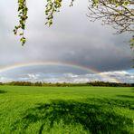 .... Regenbogen .... im Osten