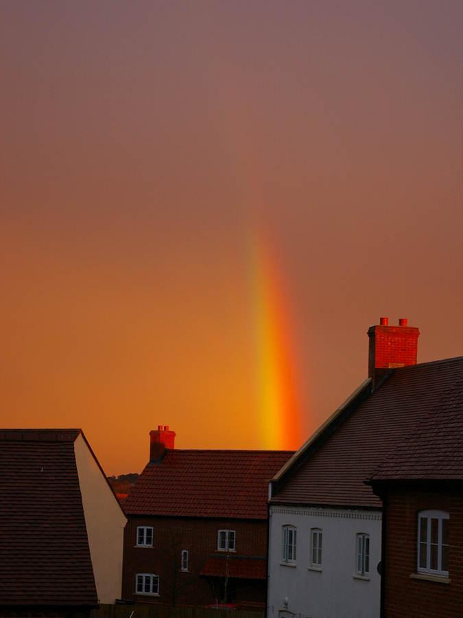 Regenbogen in der Abendsonne 2
