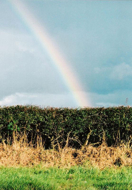 Regenbogen Irland