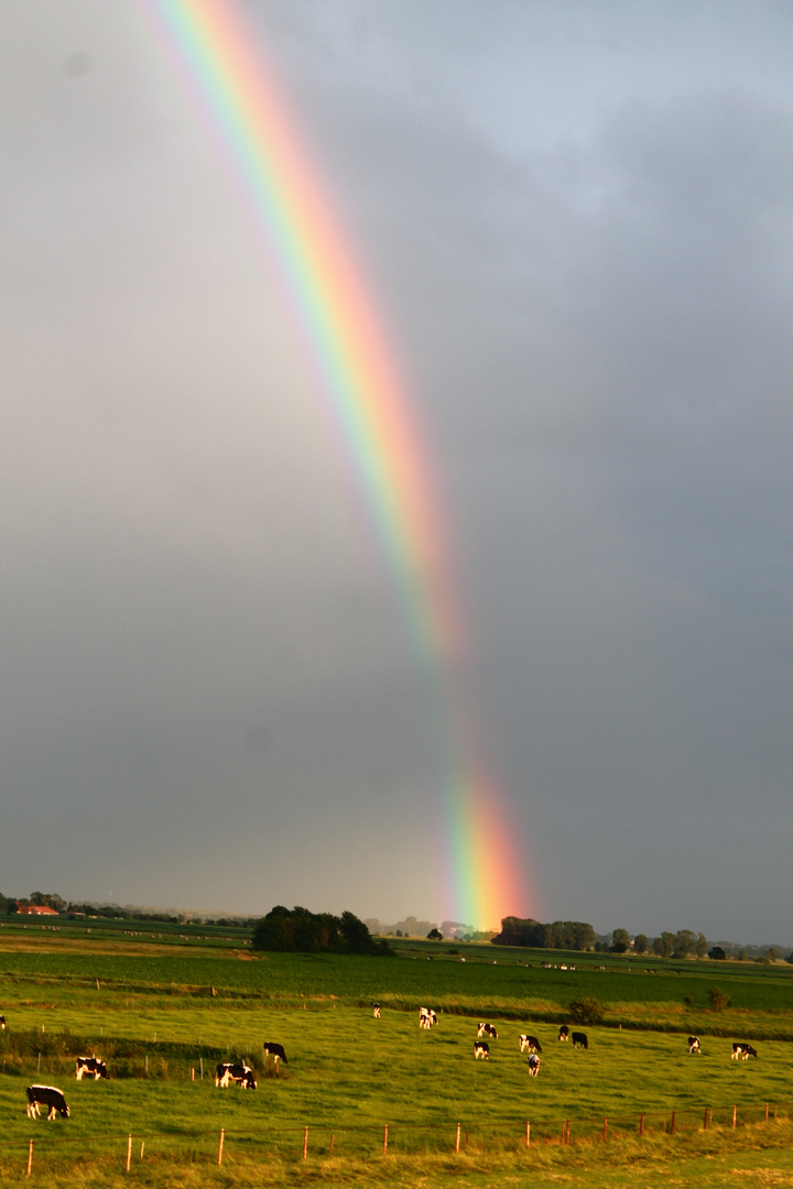 Regenbogen nach einem großen Gewitter