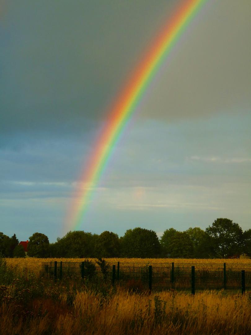"""Regenbogen oder """"oh, wie schön - guck mal"""""""